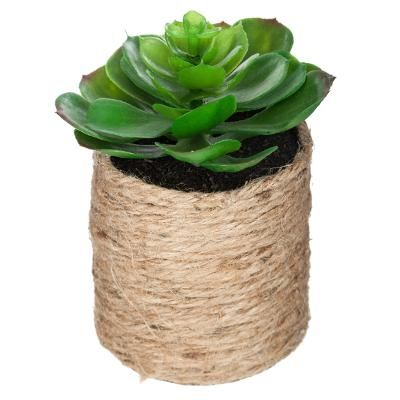 Cuerda de la planta verde etnik H15